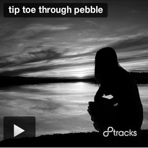tiptoethroughpeeble